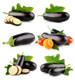 Set eggplant vegetable fruits isolated on white Stock Images