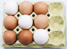 Set of eggs. Image of a set of eggs Stock Photography
