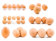 Set of eggs isolated royalty free stock photo