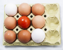 Set of eggs and tomato. Image of a set of eggs and tomato Royalty Free Stock Images