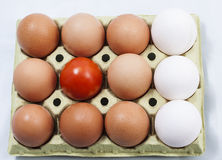 Set of eggs and tomato. Image of a set of eggs and tomato Stock Photos