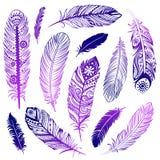 Set of  Ehnic feathers Stock Photos