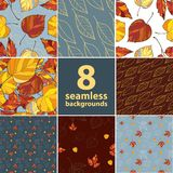 Set of eight autumn leaves  backgrounds Royalty Free Stock Photos