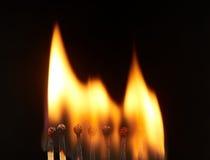 Set of eight burning wooden matches. Isolated on black background Stock Image