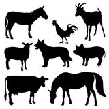 Set of eight farm animals. Set of eight abstract farm animals: horse, pig, goat, dog, cow, sheep, cock, donkey  on the white background Stock Image
