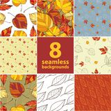 Set of eight seamless autumnal backgrounds Royalty Free Stock Photo