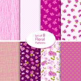 Set of eight seamless floral backgrounds Royalty Free Stock Photos