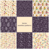 Set of eight seamless Floral patterns. Stock Photography