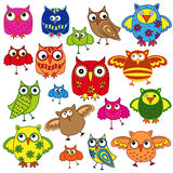 Set of eighty colourful owls Stock Photos