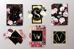 Set of elegant brochure, card, background, cover, wedding invitation. Black, red and golden marble texture. Geometric frame. Hand drawn flowers, roses White royalty free illustration