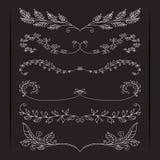 Set of elegant calligraphic foliate borders Stock Photos