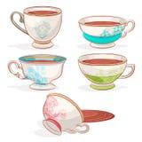 Elegant cups Stock Image