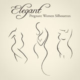 Set of elegant pregnant woman silhouettes Royalty Free Stock Photography