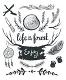 Set of elements and clip art themed around  life in the forest. Royalty Free Stock Photos