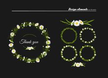 Meadow camomiles, green grass. Set of elements for design - meadow camomiles, green grass. A vector vector illustration