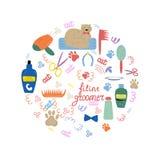 Set elementy dla opieki koty: grępla, szampon, hairdryer, ilustracja wektor