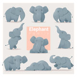 Set of Elephant family. Vector , illustration Royalty Free Stock Photography