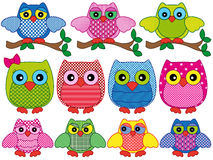 Set of eleven ornamental cartoon owls Stock Images