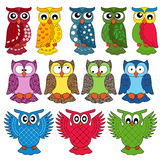 Set of eleven owls. Set of eleven colourful vector owls isolated on white background royalty free illustration