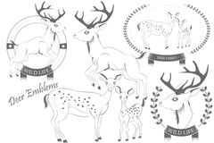 Set emblematy z jelenim wektorem Obrazy Royalty Free