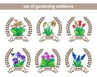 Set of emblems of garden flowers. Stock Image