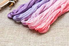 Set for embroidery with thread violet color Stock Images
