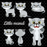 Set of emotions little cat on a black background Royalty Free Stock Photo