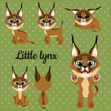 Set of emotions little lynx on a green background Stock Photo