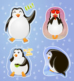 Set emotions stickers penguin: greeting, in love, skeptical, resentful Royalty Free Stock Photography