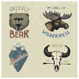Set of engraved vintage, hand drawn, old, labels or badges for camping, hiking, hunting with moose face, grizzly bear Royalty Free Stock Photos
