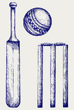 Set equipment for cricket. Royalty Free Stock Images