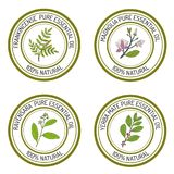 Set of essential oil labels. Hand drawn vector illustration Royalty Free Stock Photo