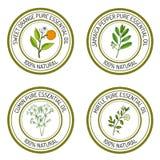 Set of essential oil labels: sweet orange, jamaica pepper, cumun. Mirtle. Vector illustration Stock Images