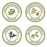 Set of essential oil labels: ylang-ylang, juniper, bitter orange. Rosewood. Vector illustration stock illustration