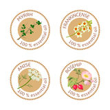 Set of essential oils labels. Myrrh, frankincense, anise, rosehip Stock Photography