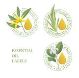 Set of essential oils labels. Neroli, rosemary, ylang-ylang Stock Photography