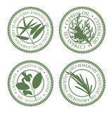 Set of essential oils labels. Neroli, rosemary, ylang-ylang, cypress Royalty Free Stock Photo