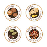 Set of essential oils labels. Nutmeg, ginger, cardamom, star anise Stock Image