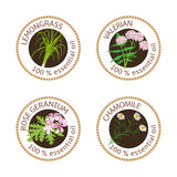 Set of essential oils labels. Rose Geranium, lemongrass, Chamomile, Valerian herb Royalty Free Stock Image