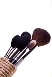 Set of essential professional make-up brushes Royalty Free Stock Photography