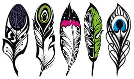 Set of ethnic feathers Stock Image