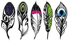 Set of ethnic feathers Stock Image