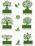 Set etykietki z drzewami Fotografia Royalty Free