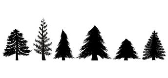 Set of Evergreen Trees. Set of 6 pine, spruce, and other evergreen trees in illustration format Stock Photo