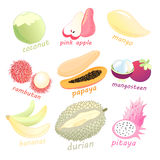 Set of exotic fruits Royalty Free Stock Images