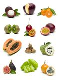 Fruit set isolated on white background royalty free stock photography