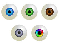 Set of eyeballs. Isolated on white Stock Images