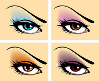Set of eyes. Set of different eyes, vector illustration Royalty Free Stock Images