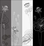 set för blommalotusblommamodell Royaltyfri Bild