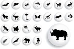 set för natur för 16 knappar för b stor Arkivbild